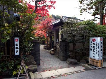 kane_autumn[1].jpg
